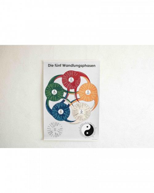 Poster der 5 Wandlungsphasen