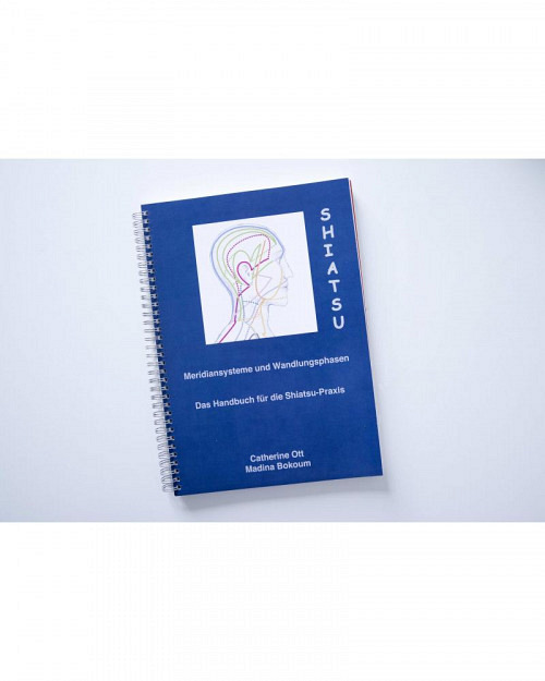 Buch der Meridiane und Wandlungsphasen