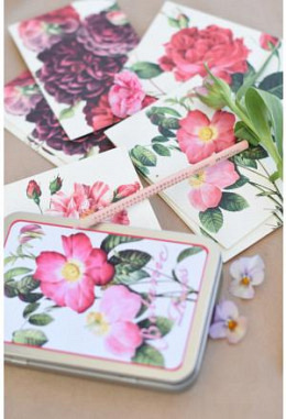 Wildrosen-Postkarten