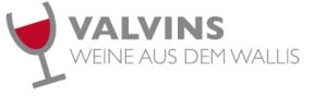 Valvins GmbH