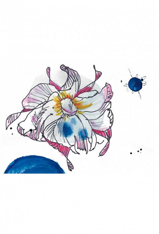 Blüte&Planet